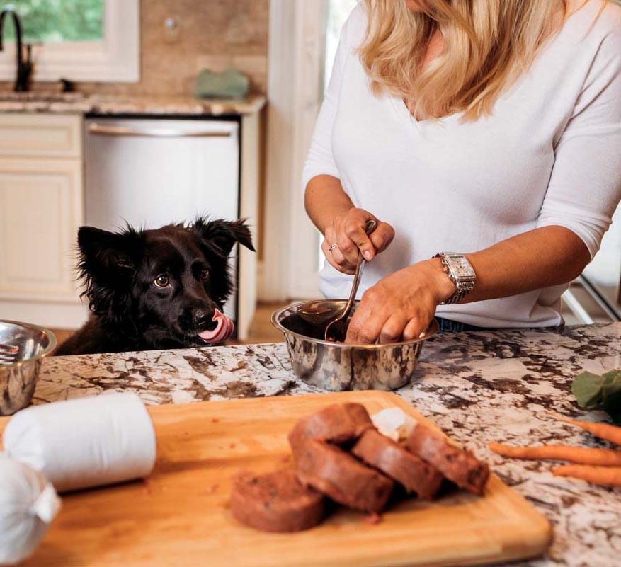 feeding raw dog food