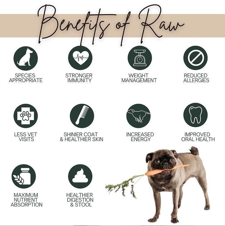 Benefits of Brown's Best Raw dog food